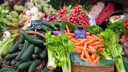 Für jeden Monat das passende Obst und Gemüse