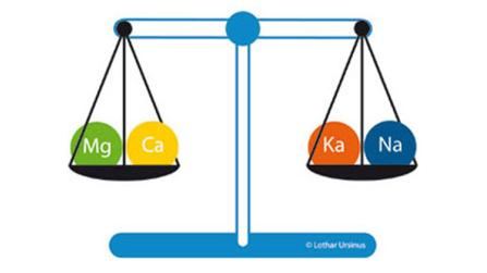 Kalium - stärkt die Nerven und die Psyche