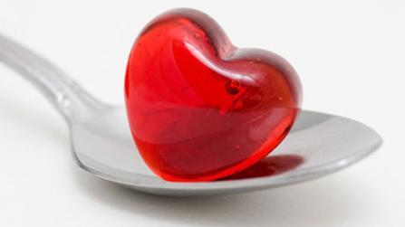 Das Herz im Labor