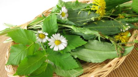 Fit in den Frühling – mit Ernährung das Wohlbefinden fördern
