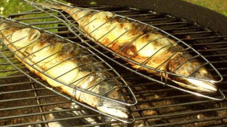 Kalorienarm grillen: Fisch und Meeresfrüchte