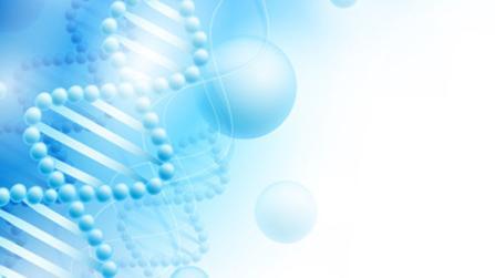 Genetische Stoffwechselkonstitution