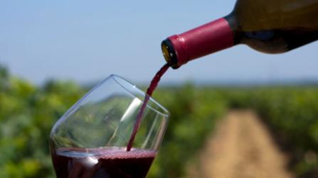Ist Alkohol für den Stoffwechsel gesund?