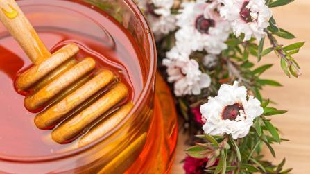 Manuka-Honig - das süße Heilmittel