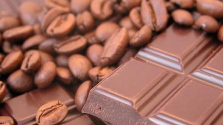 Schokolade – die Speise der Götter